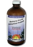 Natures Life  Lactobacillus Probiotic Blueberry 16 Fl. Ounce